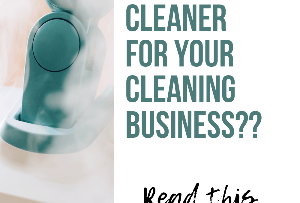 Best Steam Cleaner for Cleaning Business