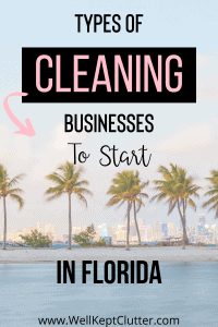 Types of Cleaning Businesses to start in Florida